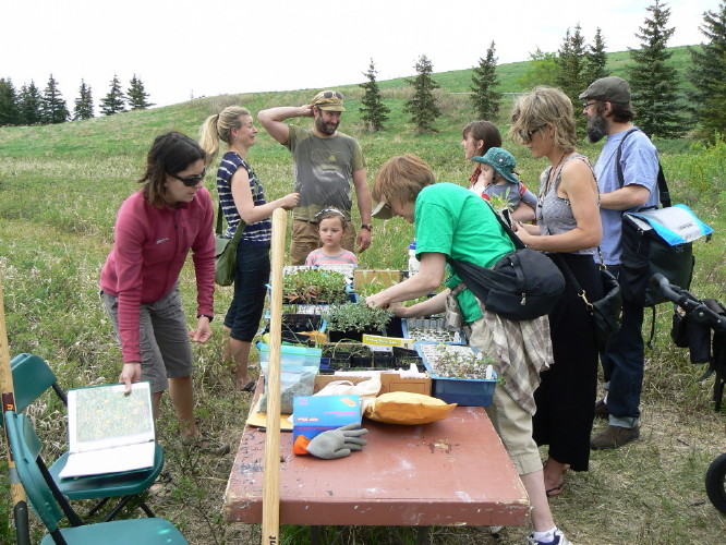 Photo credit Gary Seib: Native Planting with Fidji Gendron